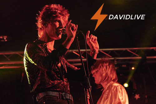 David Bowie Tribute Band - David Live